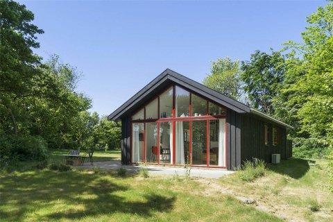 Ferienhaus 51819