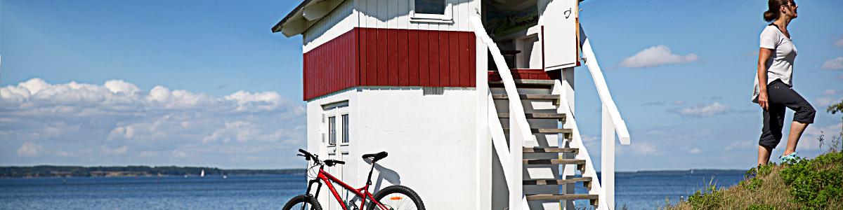 Feddet, Fjord und Fossilien (36Km)