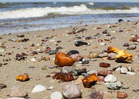 Bernstein Erkennen Am Strand Von Dänemark Suchen Finden