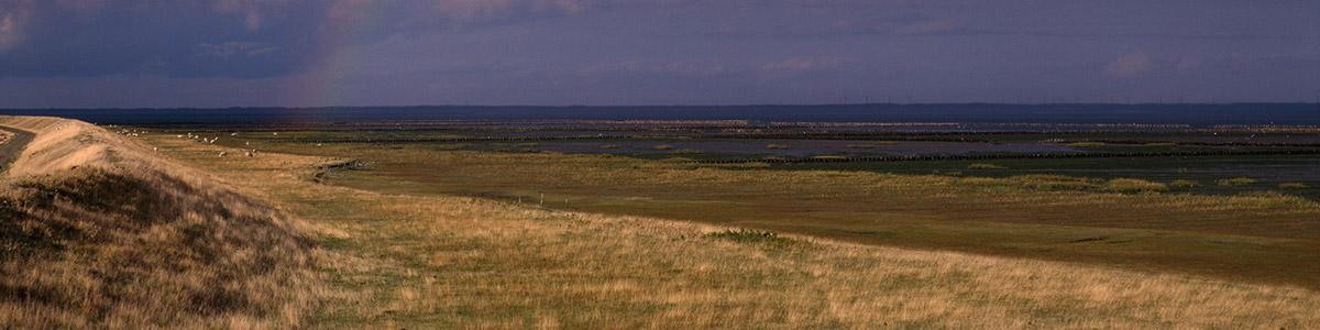 Nordseeinsel Rømø (31 Km)