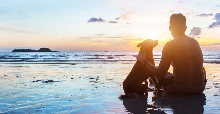 Mit Hund an Strand in Dänemark